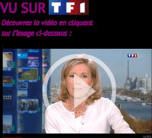 accueil_vu_sur_tf1